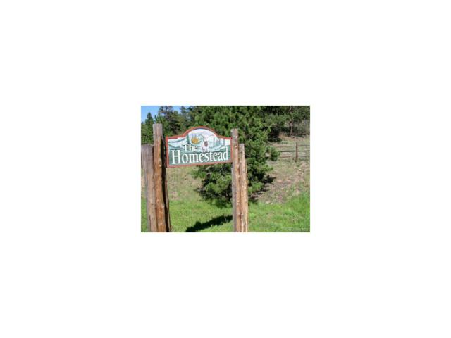 21245 Trappers Trail, Morrison, CO 80465 (#2694667) :: Thrive Real Estate Group