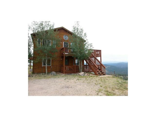 33828 Mineral Lane, Pine, CO 80470 (MLS #2694771) :: 8z Real Estate