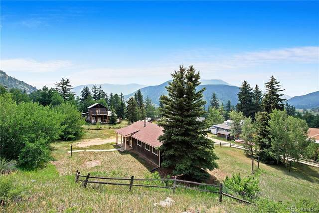 154 W Sunny Avenue, Empire, CO 80438 (MLS #2699965) :: 8z Real Estate