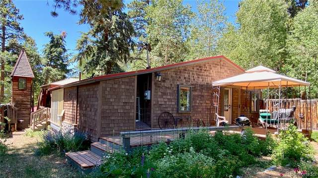 10993 Barker Avenue, Conifer, CO 80433 (#2711463) :: My Home Team