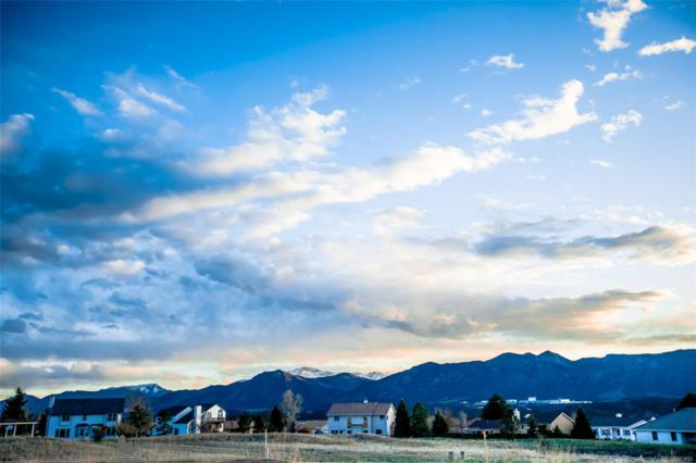 14160 Stone Eagle Place, Colorado Springs, CO 80921 (MLS #2713608) :: 8z Real Estate