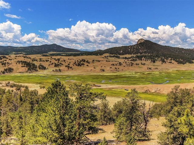 12165 County Road 77, Jefferson, CO 80456 (#2717473) :: The Galo Garrido Group