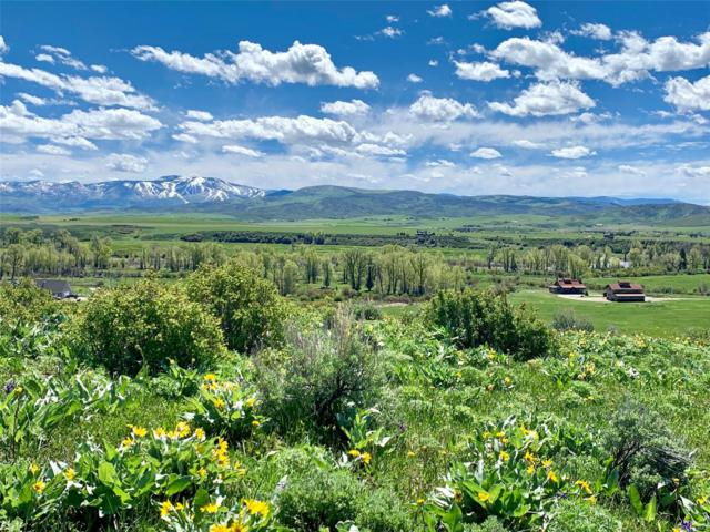 Country Road 44, Steamboat Springs, CO 80487 (#2717977) :: HomePopper