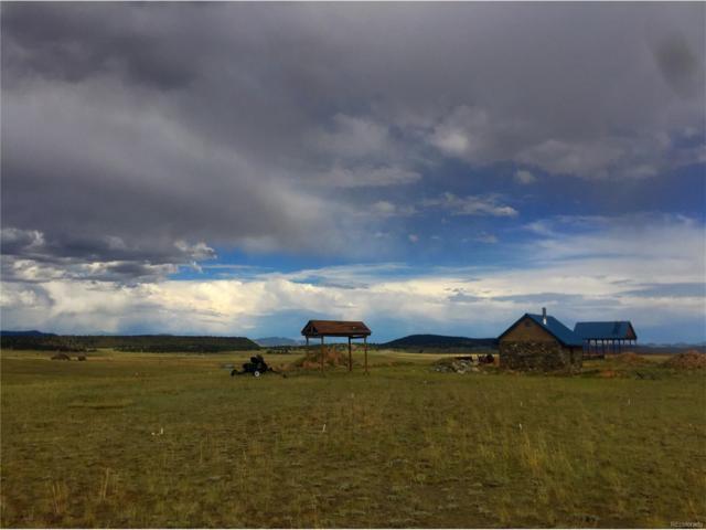 371 Prairie Trail, Hartsel, CO 80449 (MLS #2718157) :: 8z Real Estate