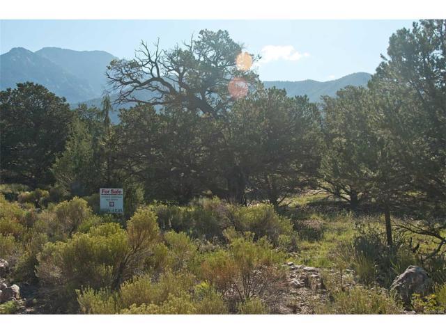 1198 & 1199 Hilltop Way, Crestone, CO 81131 (MLS #2720733) :: 8z Real Estate