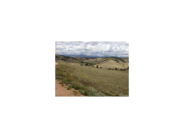 0000 Black Horse Trail, Hartsel, CO 80449 (#2723766) :: RE/MAX Professionals