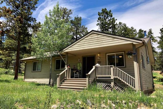 33903 Martin Road, Pine, CO 80470 (#2728352) :: The Heyl Group at Keller Williams