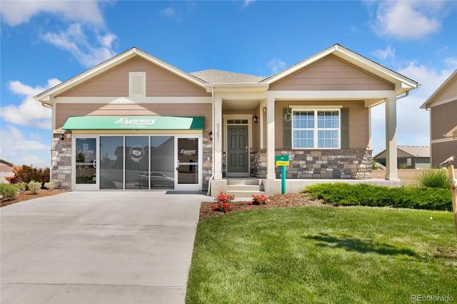 7318 Fraser Circle, Frederick, CO 80530 (#2729299) :: Bring Home Denver with Keller Williams Downtown Realty LLC