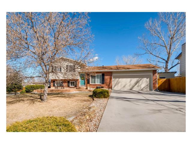 4828 S Taft Street, Morrison, CO 80465 (MLS #2733504) :: 8z Real Estate