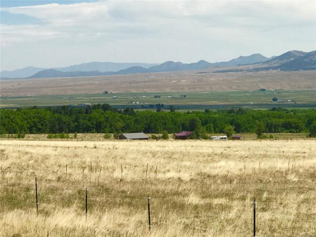 5280 County Road 125, Westcliffe, CO 81252 (#2735465) :: The Griffith Home Team
