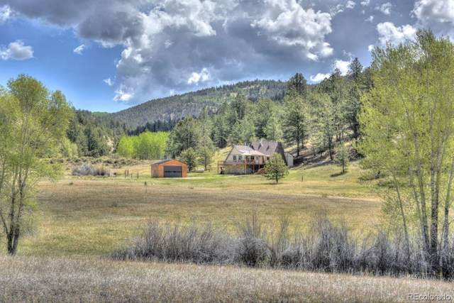 160 Rufus Run, Westcliffe, CO 81252 (#2739594) :: The HomeSmiths Team - Keller Williams