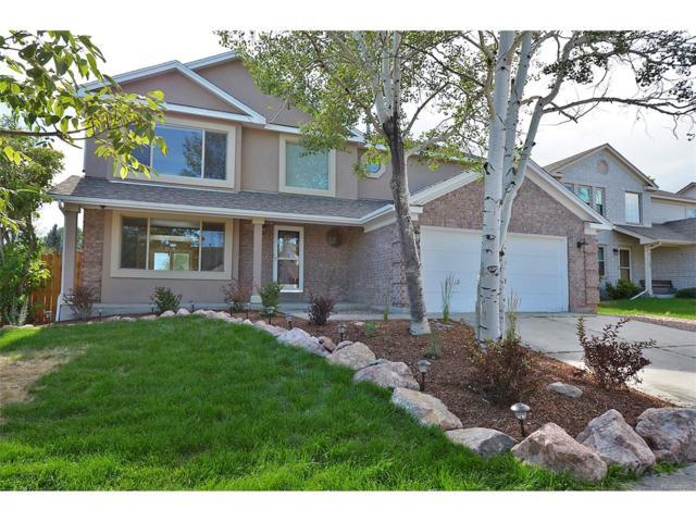 8010 Potomac Drive, Colorado Springs, CO 80920 (MLS #2741302) :: 8z Real Estate