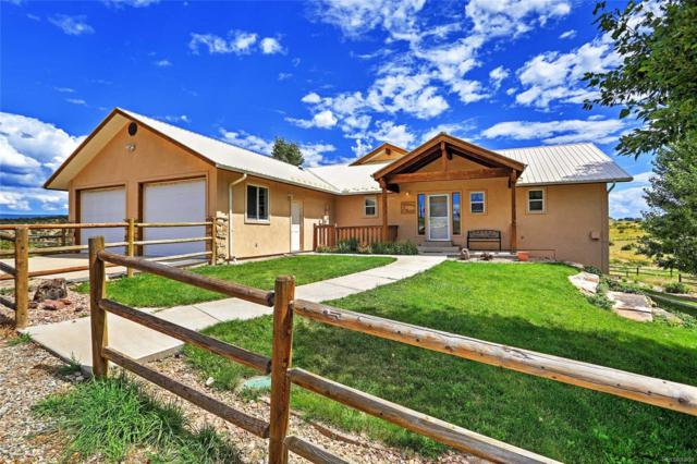 32101 Highway 145, Red Vale, CO 81431 (#2741549) :: HomePopper