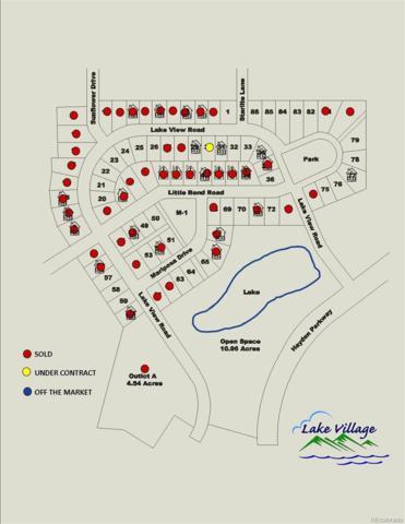 Lake View Drive, Hayden, CO 81639 (#2743134) :: The Peak Properties Group