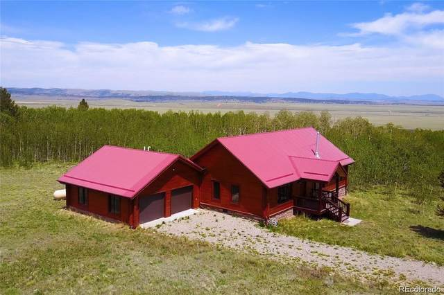 871 Sheep Ridge Road, Fairplay, CO 80440 (#2745432) :: Berkshire Hathaway HomeServices Innovative Real Estate