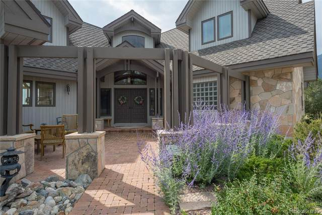 30161 Trails End, Buena Vista, CO 81211 (#2747237) :: Bring Home Denver with Keller Williams Downtown Realty LLC