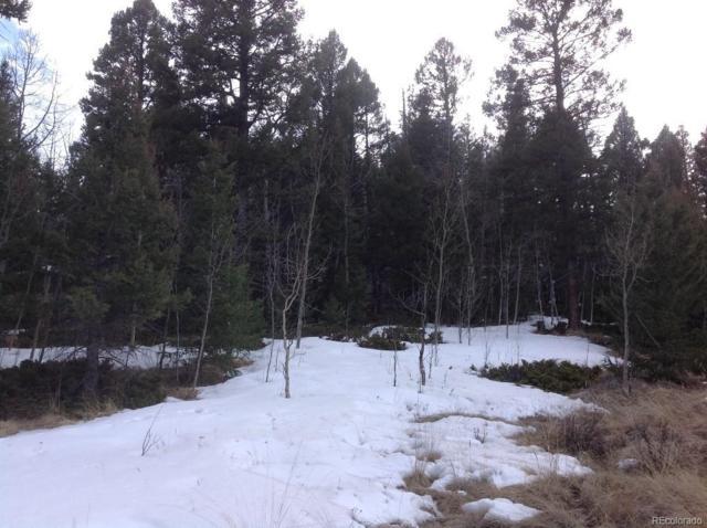 52 Spanish Bit Drive, Lake George, CO 80827 (#2747291) :: Wisdom Real Estate