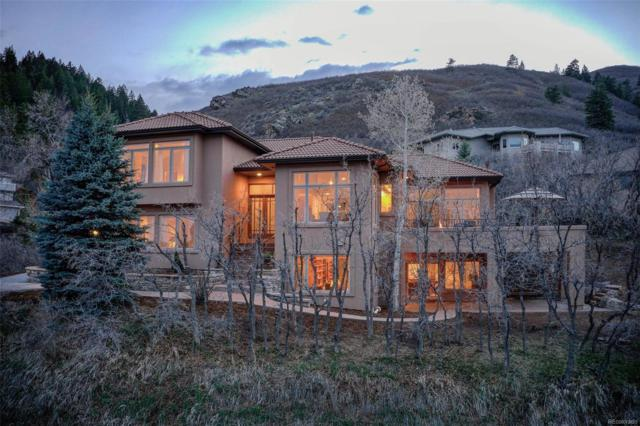 10541 Raven Run, Littleton, CO 80125 (#2747589) :: The Healey Group