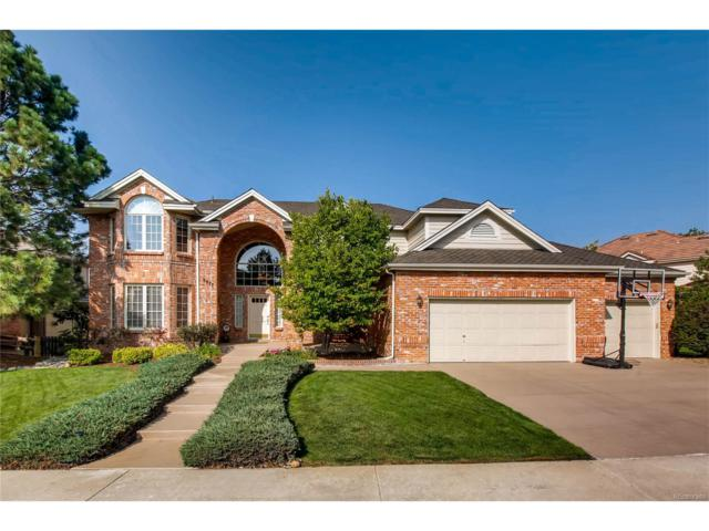 9877 Isabel Court, Highlands Ranch, CO 80126 (MLS #2752186) :: 8z Real Estate
