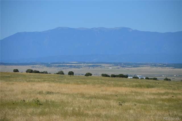 Red Creek Springs Road, Pueblo, CO 81005 (#2753588) :: Own-Sweethome Team