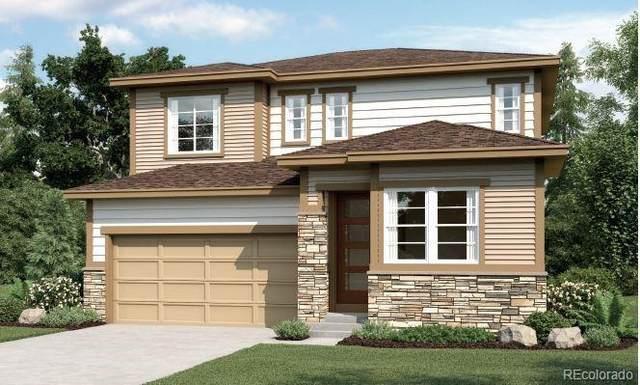 5582 Cat Hollow Court, Castle Rock, CO 80104 (#2756616) :: Venterra Real Estate LLC
