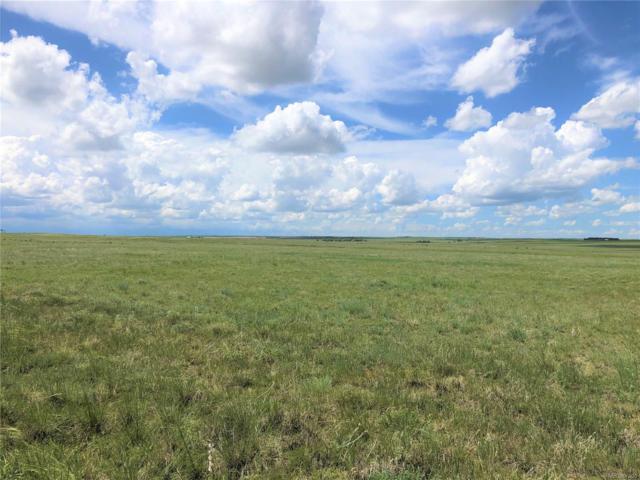 80 Acres Hwy 94, Rush, CO 80833 (#2756941) :: James Crocker Team