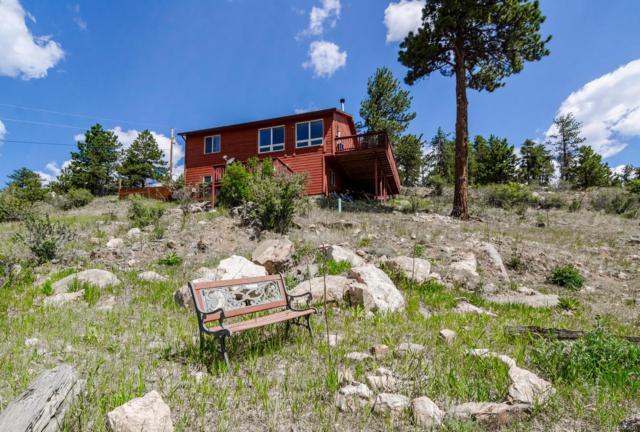 336 N Ridge Road, Bailey, CO 80421 (#2757100) :: Bring Home Denver