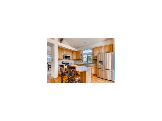 16807 Trail View Circle, Parker, CO 80134 (MLS #2759283) :: 8z Real Estate