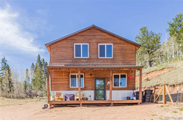 213 Willow Road, Divide, CO 80814 (#2759748) :: Wisdom Real Estate