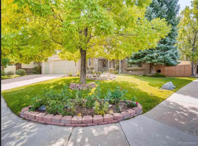 2510 W 110th Avenue, Westminster, CO 80234 (#2763402) :: Realty ONE Group Five Star