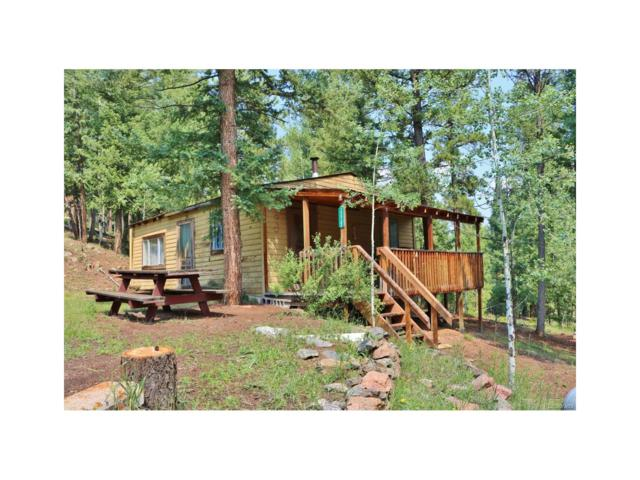 33733 Kerr Road, Pine, CO 80470 (MLS #2764184) :: 8z Real Estate