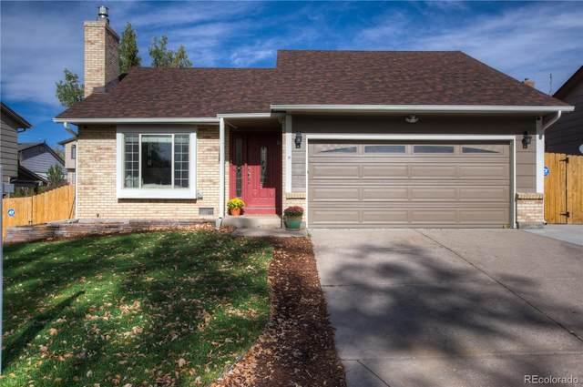 2067 Summerfield Drive, Castle Rock, CO 80104 (#2764409) :: Peak Properties Group