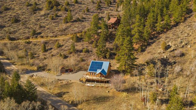 1290 Mill Creek Road, Dumont, CO 80436 (#2769457) :: The Galo Garrido Group
