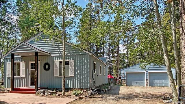10977 Goodheart Avenue, Conifer, CO 80433 (#2770479) :: The DeGrood Team
