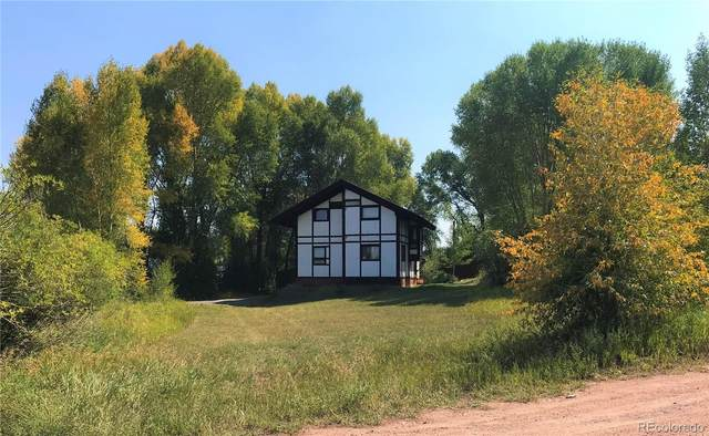 175 W 2nd Street, Yampa, CO 80483 (#2774977) :: The DeGrood Team