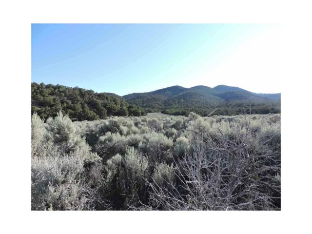 1382 Artie Rd., Fort Garland, CO 81133 (MLS #2775430) :: 8z Real Estate