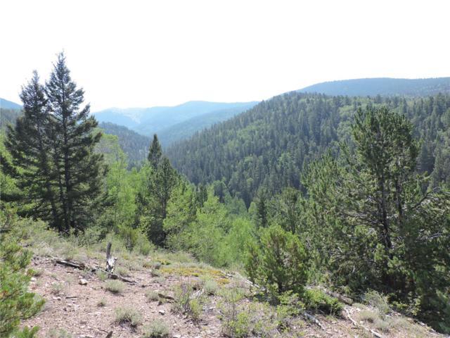 6692 Lyet Road, Fort Garland, CO 81133 (#2778176) :: Bring Home Denver