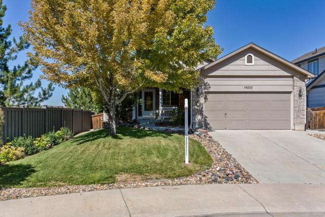 18255 Michigan Creek Way, Parker, CO 80134 (#2778259) :: Sellstate Realty Pros