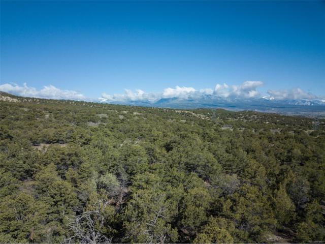 5450 Longbranch Road, Salida, CO 81201 (MLS #2779282) :: 8z Real Estate
