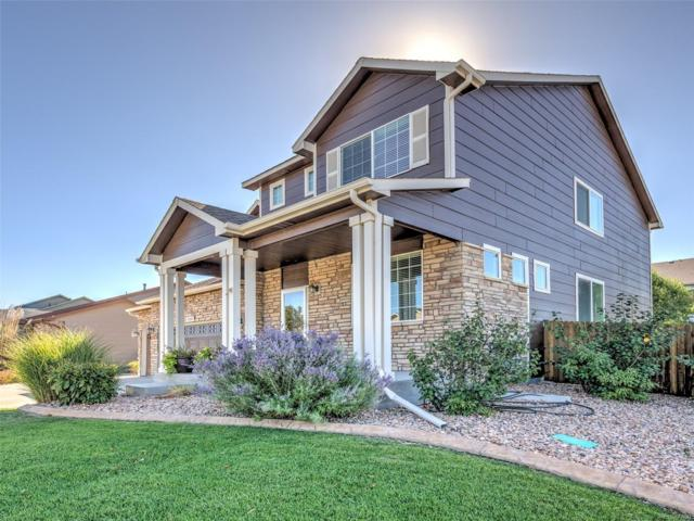 13033 Niagara Street, Thornton, CO 80602 (MLS #2782426) :: 8z Real Estate
