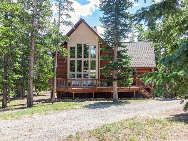 888 Puma Place, Fairplay, CO 80440 (#2782757) :: Colorado Home Finder Realty