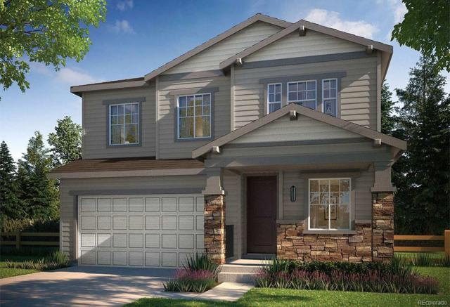1025 Basalt Ridge Loop, Castle Rock, CO 80108 (#2783685) :: Bring Home Denver with Keller Williams Downtown Realty LLC