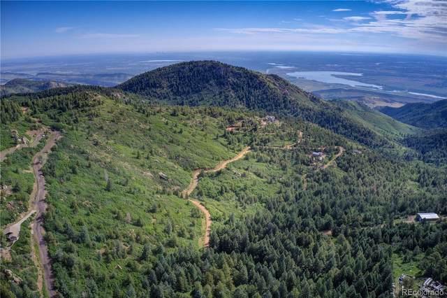 Elk Mountain Trail, Littleton, CO 80127 (#2783856) :: Own-Sweethome Team