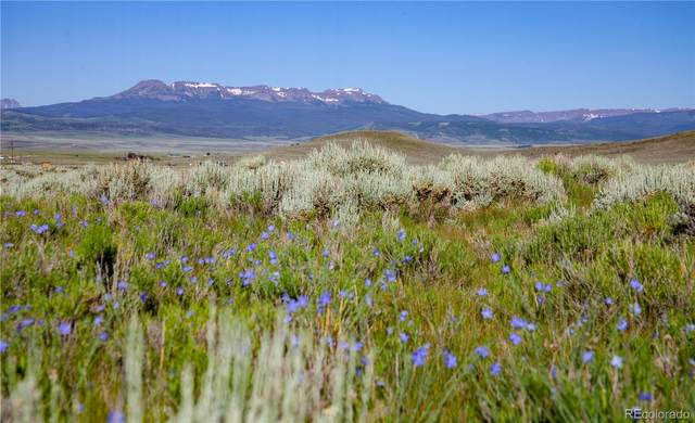 235 Acres State Highway 134, Toponas, CO 80479 (#2791467) :: The DeGrood Team