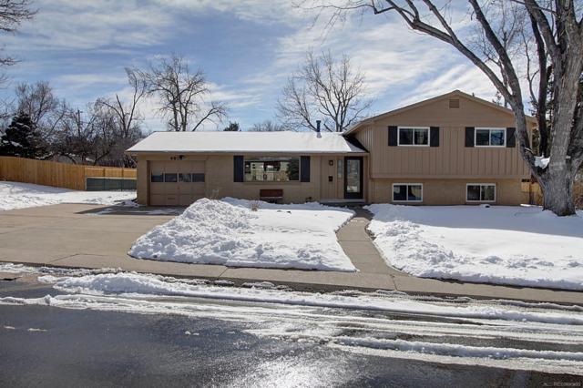 6856 S Prince Circle, Littleton, CO 80120 (MLS #2800174) :: 8z Real Estate