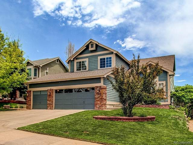 1257 Switch Grass Drive, Castle Rock, CO 80109 (#2803267) :: My Home Team