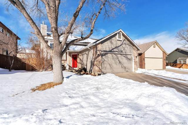 9905 Foxhill Circle, Highlands Ranch, CO 80129 (#2804846) :: Hudson Stonegate Team