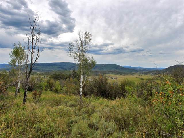 32300 Cr 41, Steamboat Springs, CO 80487 (#2809174) :: Wisdom Real Estate