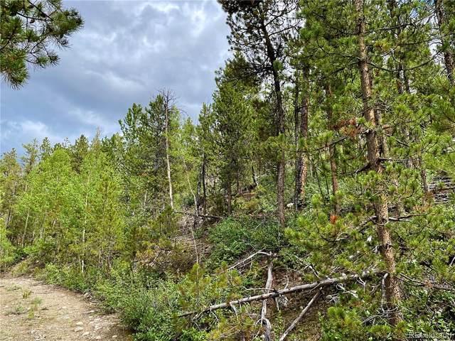 10 Mt Elbert Drive, Twin Lakes, CO 81251 (MLS #2811878) :: Stephanie Kolesar