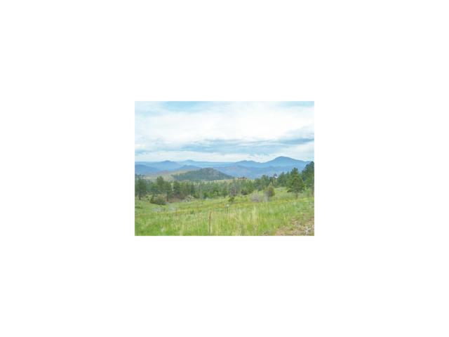 14704 Wetterhorn Peak Trail, Pine, CO 80470 (#2813902) :: The DeGrood Team